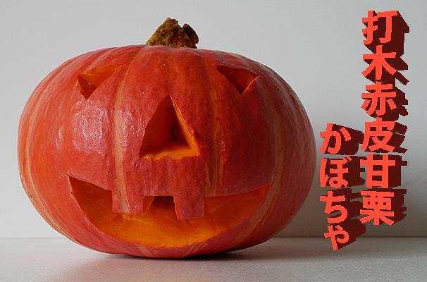 Halloween-Hokkaido-Kürbis - Beitragsbild (Foto: © 2017 fduprel)