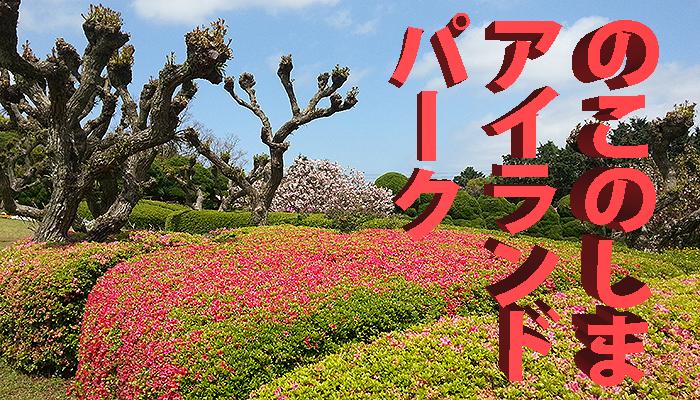 Nokonoshima – Insel der tausend Blüten
