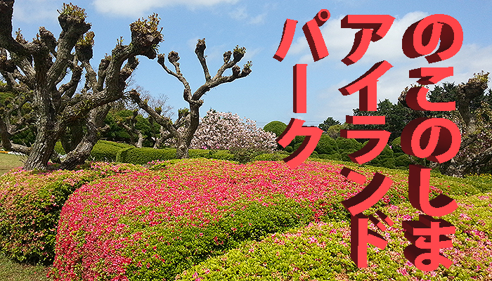 Nokonoshima Island Park (Foto: copyright 2016 fduprel)